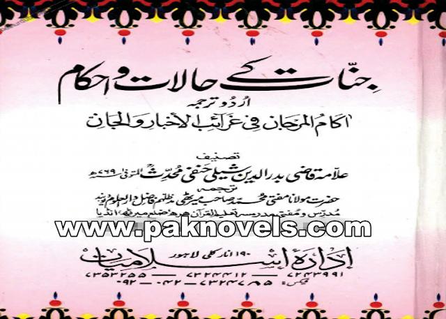 Jinnat Kay Halaat-o-Ahkam  by Allama Qazi Badrudin Shali Hanfi