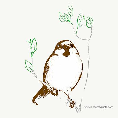 sparrow-illustration