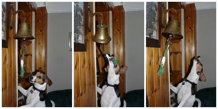 The bells the bells!