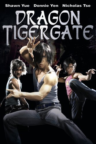 Dragon Tiger Gate 2006 720p Hindi BRRip Dual Audio Full Movie Download extramovies.in Dragon Tiger Gate 2006