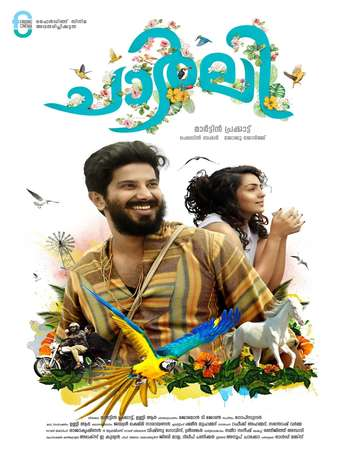 Poster Of Action Man Charlie 2016 Hindi Dubbed 700MB   Free Download Watch Online Worldfree4u