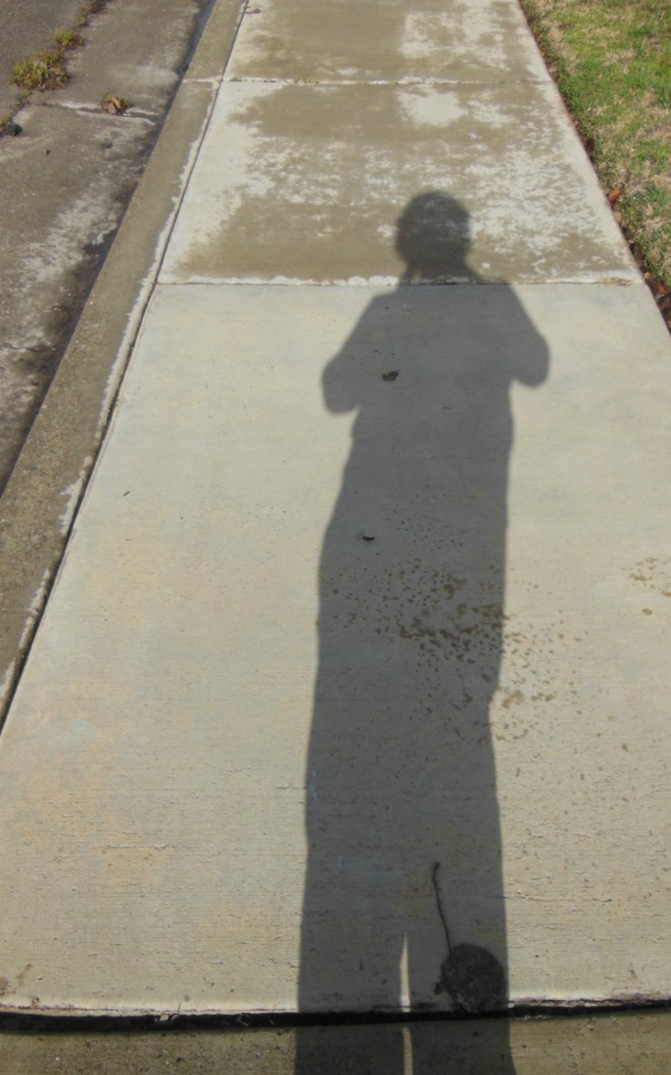 Wordless Wednesday:  Shadows - My Shadow Selfie