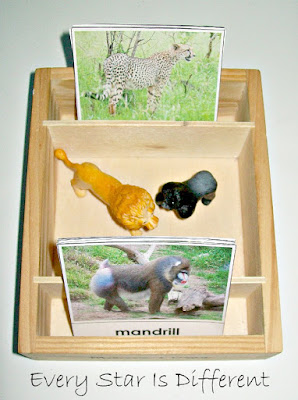 Animal Family Match Up with Free Printable