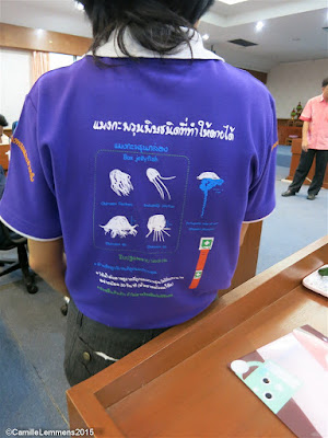 Box jelly fish instructor trainer presentation on Koh Samui