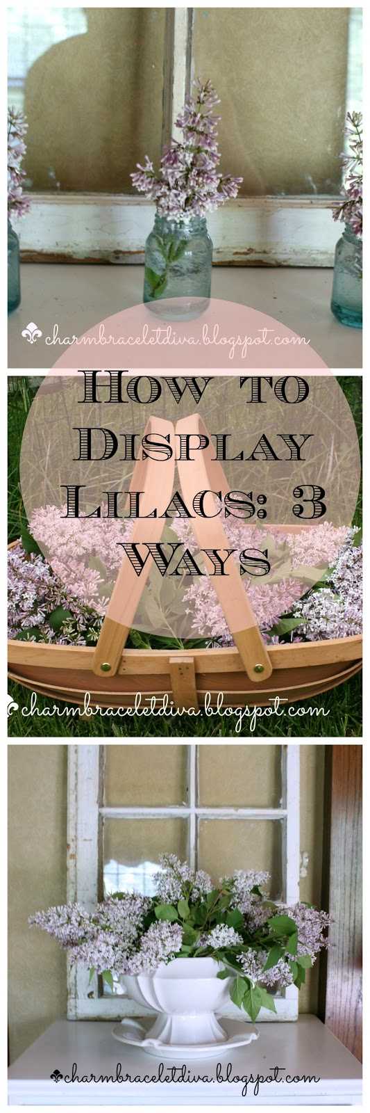 lilac display ideas collage