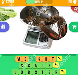 cheats, solutions, walkthrough for 1 pic 3 words level 211