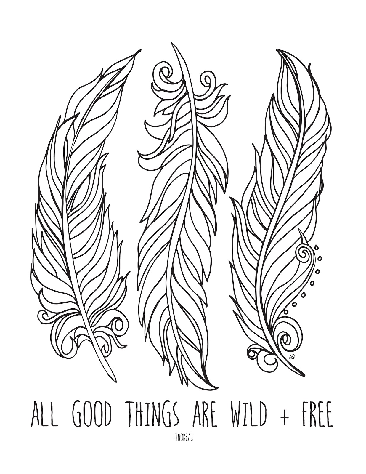 free feathers coloring pages - photo#18