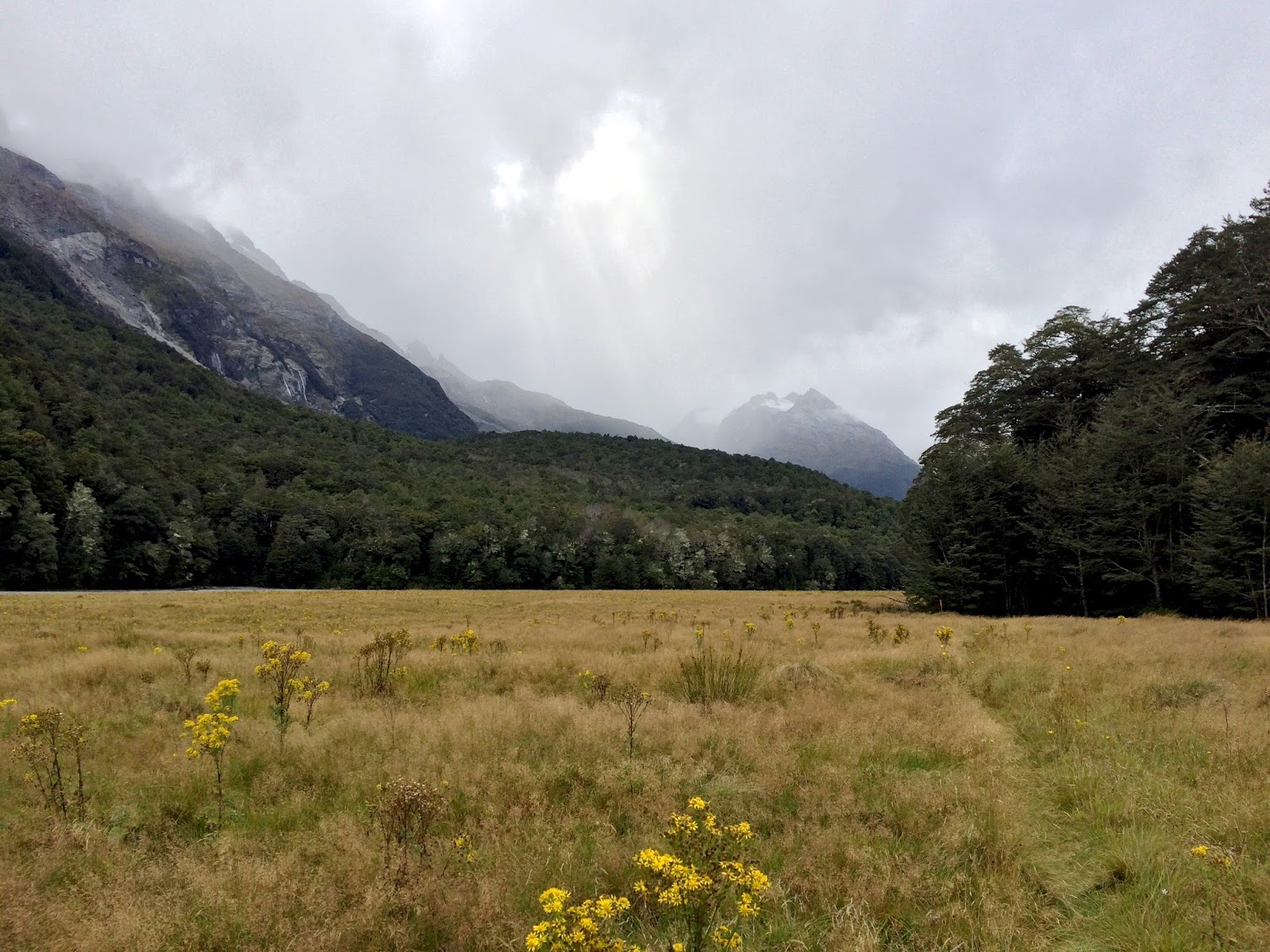 New Zealand's Best Hikes | Paradise Valley - Rees Dart Track