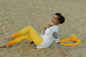 diksha panth new sizzling gallery-thumbnail-7