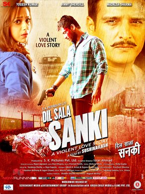 Dil Sala Sanki (2016) Hindi Full Movie 720p HDRip 1.2GB