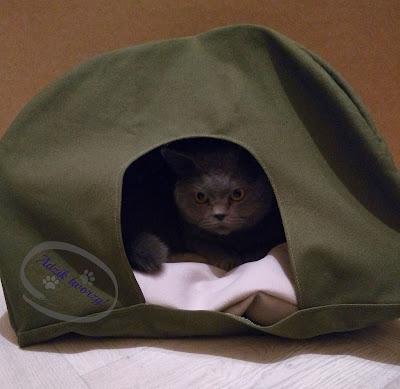Namiot dla kota  DIY