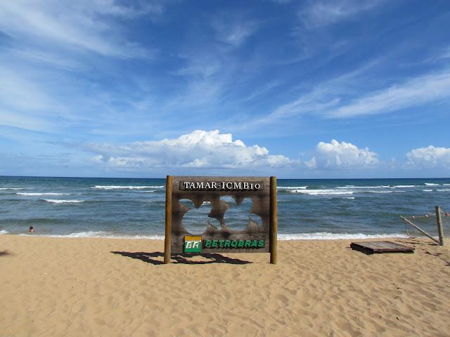 Projeto Tamar, Praia do Forte.
