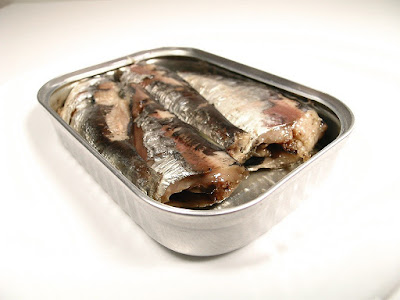 Protein in Sardines Fish and Other Considerations