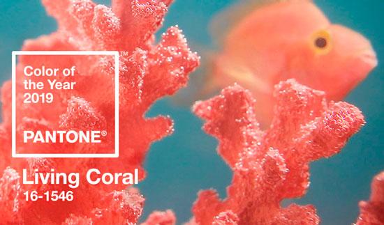 Cómo combinar el color del 2019: Living Coral