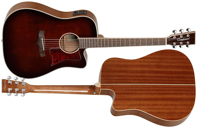 Guitarra electroacústica Tanglewood TW5WB