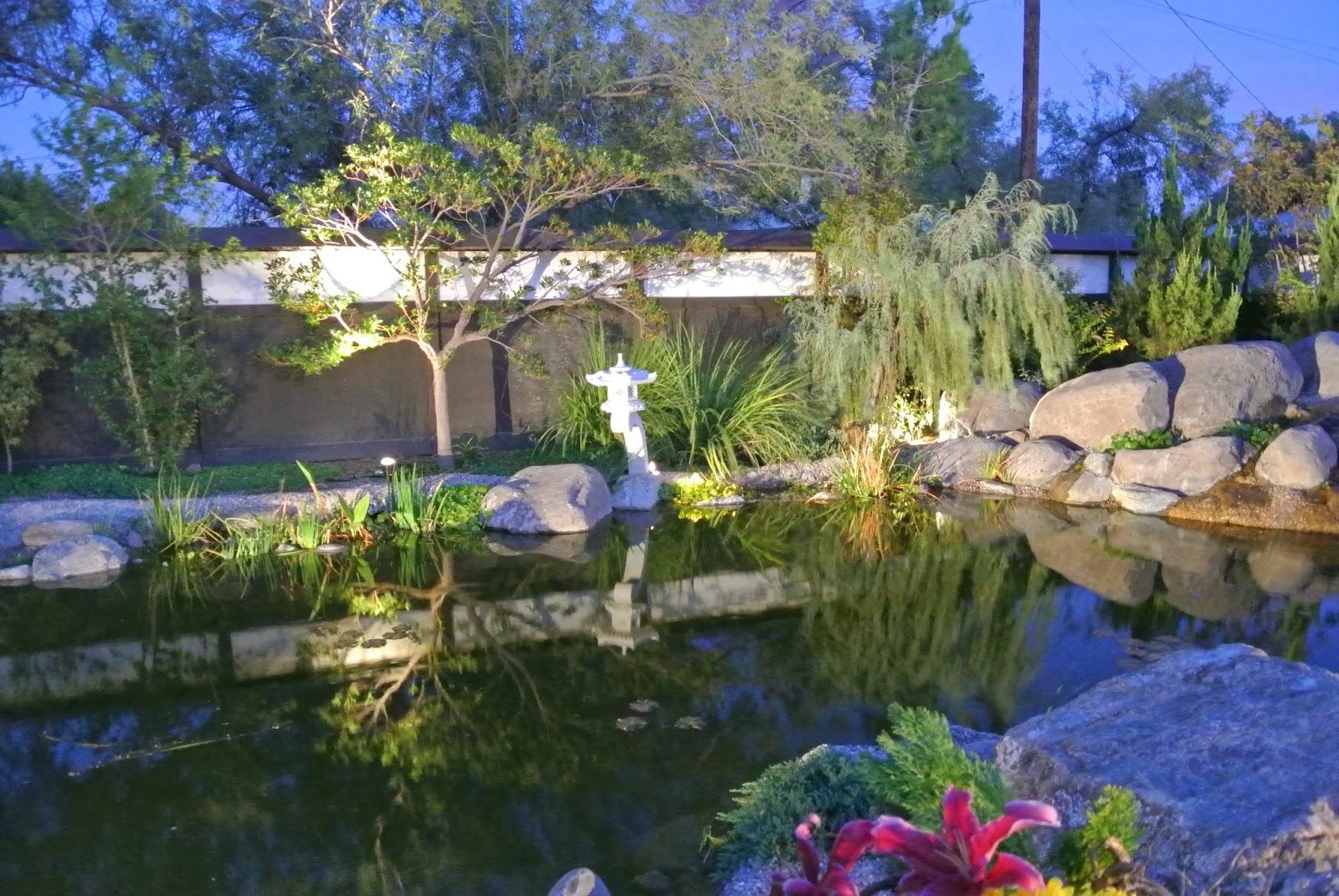 Ikebana in Desert: Yume Japanese Gardens of Tucson at night