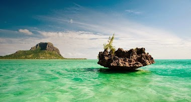 Trip to Mauritius - A Honeymoon Paradise for Newlyweds