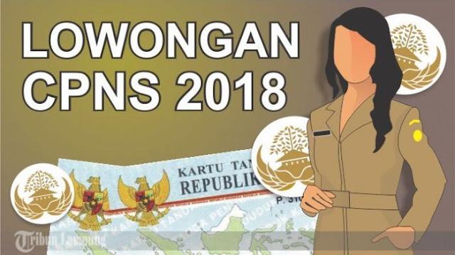 TKS dan Pegawai Honorer PALI Gembira Ada  Bimbingan Tes CPNS