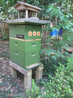 bee, beekeeping, division board feeder, feeder, pail feeder, pollen, split, swarm control,