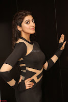 Pranitha Subhash in a skin tight backless brown gown at 64th Jio Filmfare Awards South ~  Exclusive 148.JPG