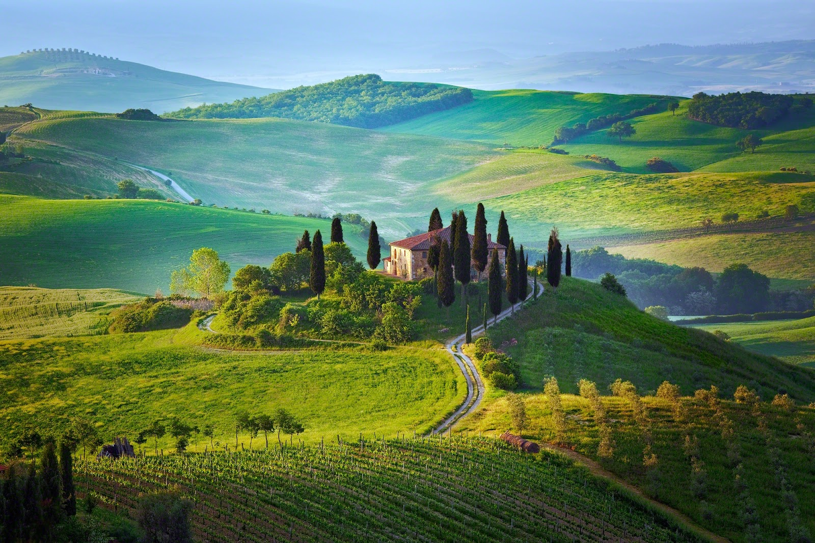 Each airline has their own procedures and methods for choosing which passengers to involuntarily bump, if needed.