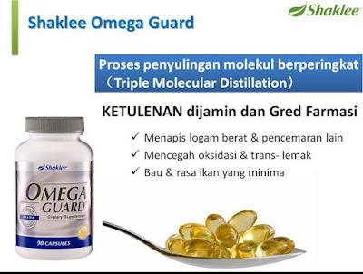 Image result for proses omega guard