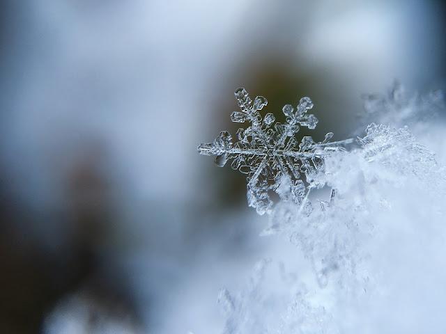 ¿Quieres-fotografiar-los-copos-de-nieve?