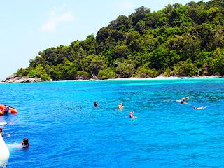 similan island day tour snorkeling