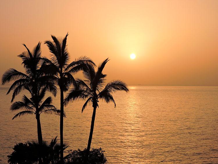 ¿Vacaciones en una villa junto al mar?: ¡marchando!