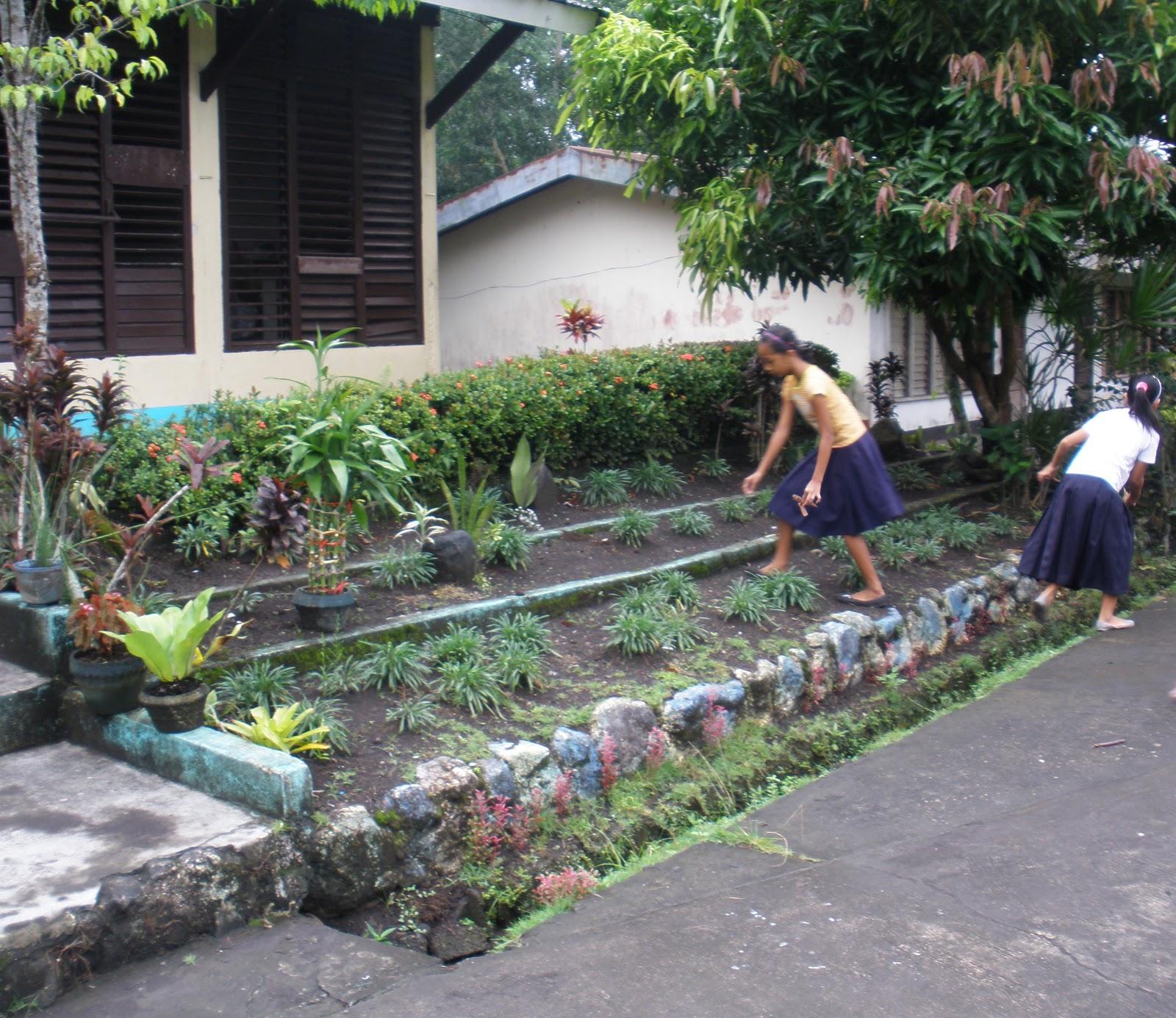 Kathryn's Blog: Gulayan Sa Paaralan @ Impact Learning Center
