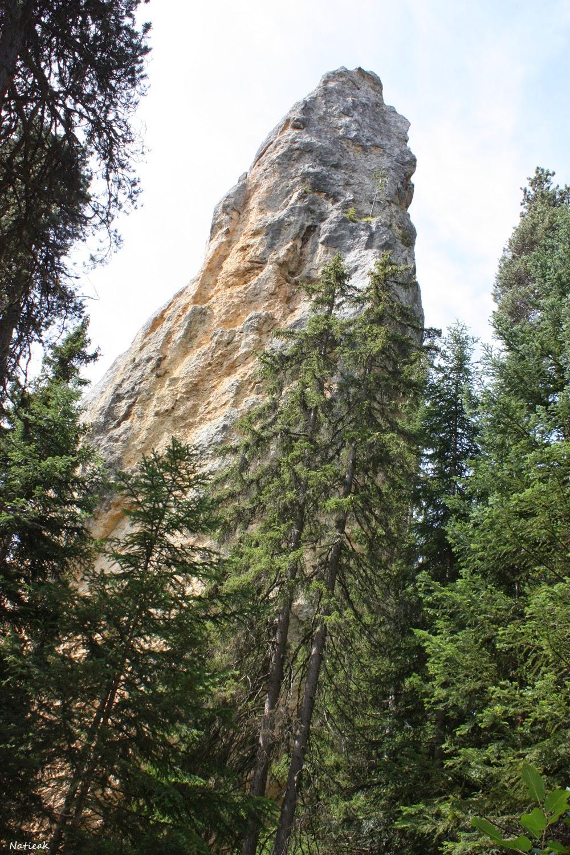 Savoie Monolithe de Sardières
