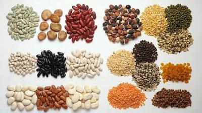 Bahan Baku Pakan Sebagai Sumber Protein Nabati