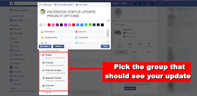 Facebook Audience Select option