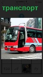 вид транспорта автобус