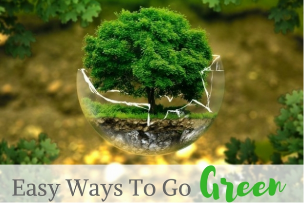 Easy Ways to Go Green