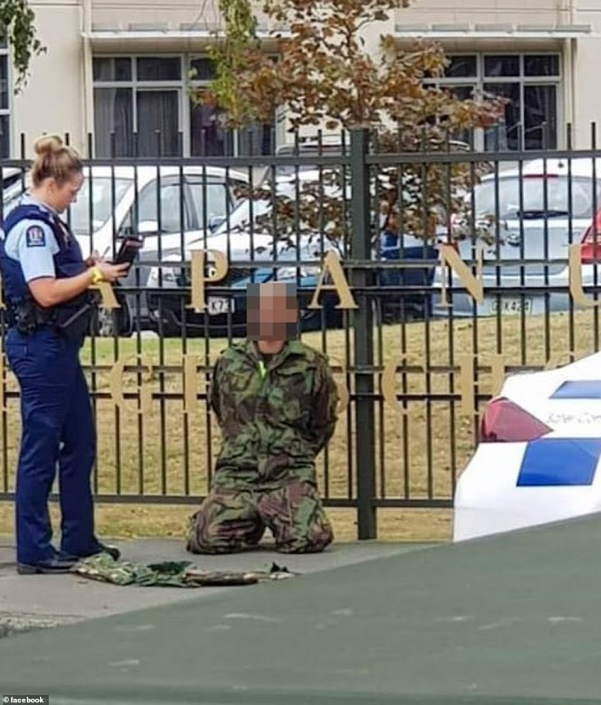 New Zealand: Dozens killed in 'terrorist' attack on two mosques
