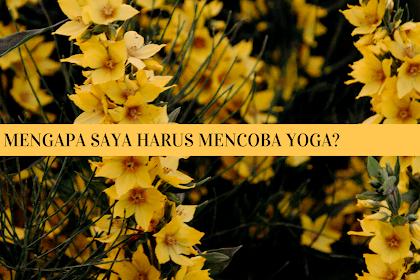 Mengapa Saya Harus Mencoba Yoga?