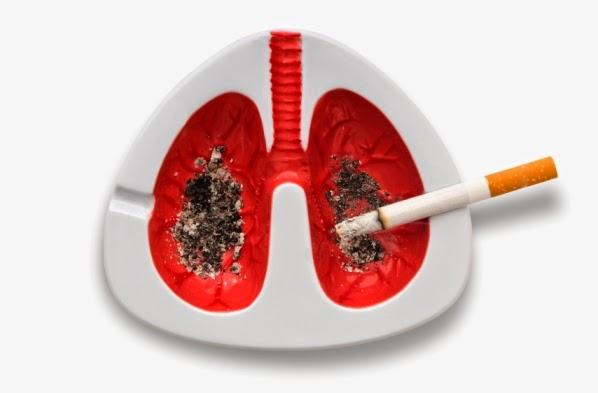 smoking and mesothelioma mesothelioma articles