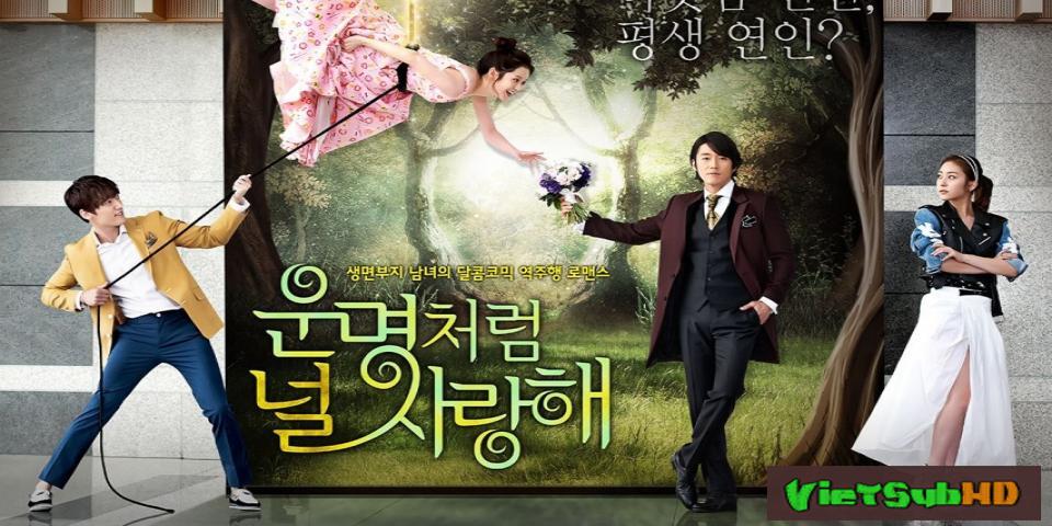 Phim Định Mệnh Anh Yêu Em Hoàn tất (20/20) VietSub HD | Fated To Love You 2014