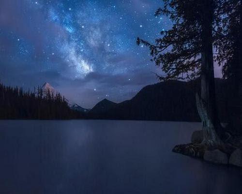 Night Sky Above the Lake