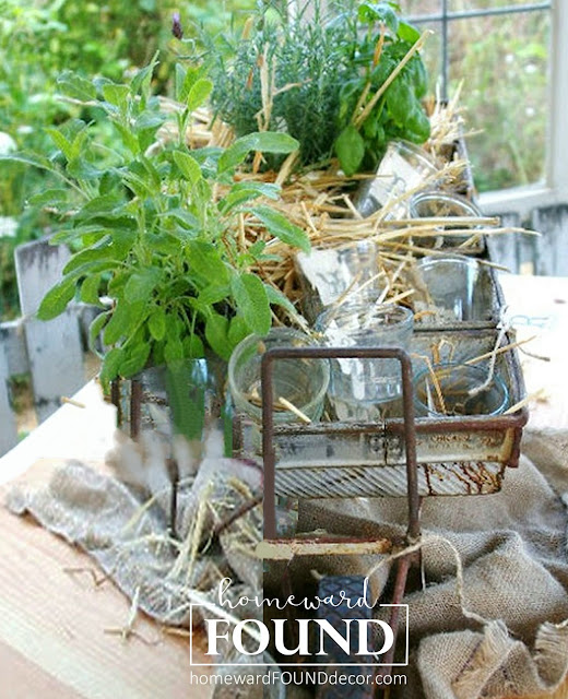 salvaged junk project spring herb garden