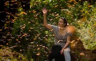 Un homenaje a la vida y a la humanidad montado con música de Diegosax y fotografías de Chico Sánchez.    Te invito a conocer el libro El curso de la vida en el cual Chico Sánchez comparte muchas de las lecciones que ha aprendido en toda una vida como fotógrafo, viajero, músico, periodista y escritor.  Un libro nuevo, diferente y emocionante que no podrás parar de leer. Un canto a la libertad, a la humanidad y a la vida.  El despertar ya ha llegado para quedarse. El cambio ya ha sucedido. Es momento de elegir. Elige la humanidad, la sonrisa, la libertad y el amor.  La sociedad hoy día está sumergida en la oscuridad. Vivimos una verdad oculta. Una sociedad llena de miedos, miedo al triunfo o al fracaso, miedo a amar o ser amado, en definitiva, miedo a vivir. ¿A qué tienes miedo?  El curso de la vida, como la vida misma, es una aventura llena de casualidades y misterios aparentemente separados pero que aparecen todos conectados cuando se los mira con el corazón.  Un libro lleno de magia que cambiará tu forma de pensar y de vivir para siempre.  Más sobre los autores: tocapartituras.com  (Diegosax) chicosanchez.com  (Chico Sánchez)  Apoyame en  https://www.patreon.com/chicosanchez
