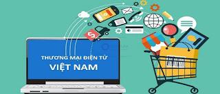 Các Website thương mại điện tử Việt Nam