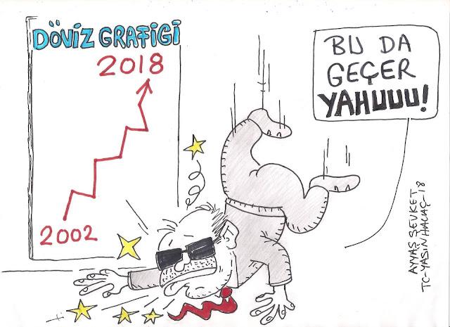 dövizin yükselişi 2018 karikatür