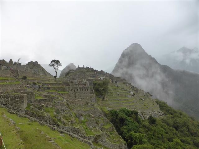 Machupicchu, terrazas de cultivo