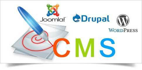 CMS Development Services in india