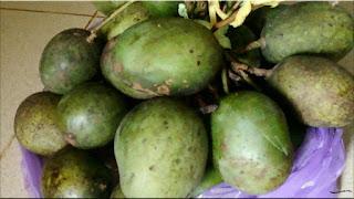 gambar buah mangga lalijiwa