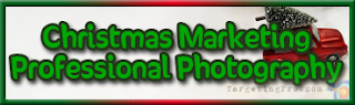 Free Christmas Marketing Ideas Professional Photography Help