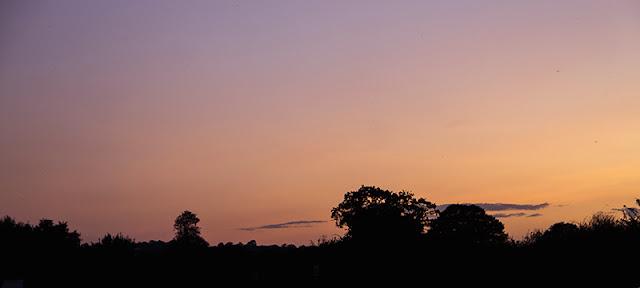 setting sun over birdfair camping