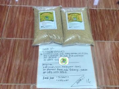 Benih pesanan SINGGIH BAYUAJI Purworejo, Jateng...   (Sebelum Packing)